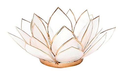 Find Something Different Etwas Finden verschiedenen natürlichen Capiz Shell Lotus Teelichthalter, Bambus, Mehrfarbig