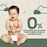 Happy Little Camper Ultra-Absorbent Hypoallergenic Natural Disposable Baby Diapers, Chlorine-Free Protection for Sensitive Skin, Size 3, 31 Count