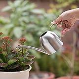 ℳodern Garden Garden Watering Can Watering Flower kettle Solid Stainless Steel Pot Long Spout Small Indoors Outdoor Garden (500ML)