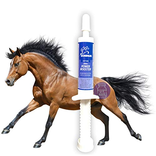 EMMA Vitamin Booster for Horses Suplementos nutricionales I Pasta Oral con vitaminas B para Caballos, B12, B6, B2, B1 I Vitamina E, A, D Zinc, Minerales, Oligoelementos 1 Pc.