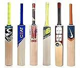 Cricket BAT Samaira Sunshine Kashmir Willow Cricket Bat with Logo (Full Size)
