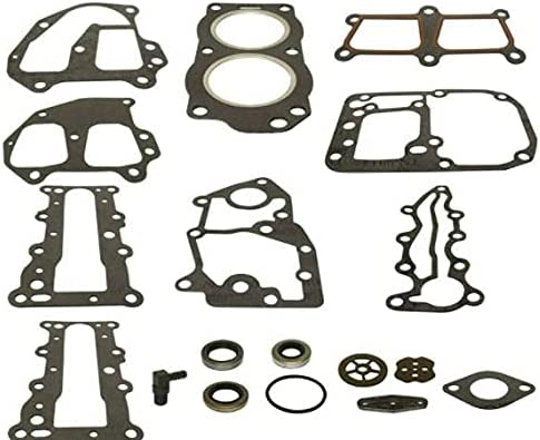 Powerhead Gasket Set for High quality Johnson Hp Evinrude 15 Year-end gift 9.9