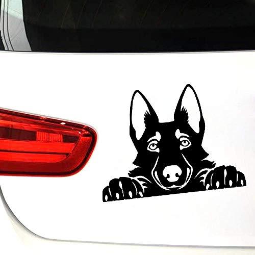 Autosticker voor honden en ramen, vinylsticker