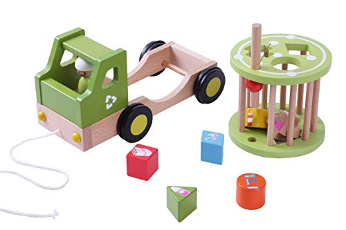 EverEarth Nachzieh-Recycling Truck (EE33782), Multi