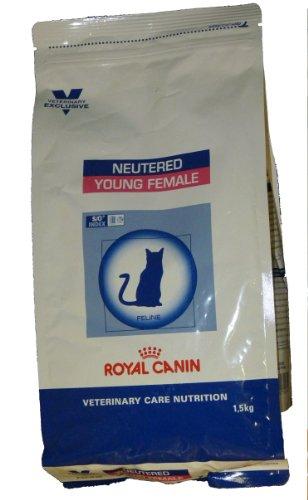 ROYAL CANIN C-58341 Dieta Felina Young Femmina - 1,5 kg