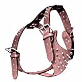 Top Dog Spiked Pink Leather Dog Harness