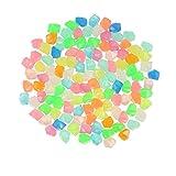 300 piedras luminosas luminosas para jardín, decoración de aceras, acuarios, caminos, césped, jardín, etc. (multicolor).