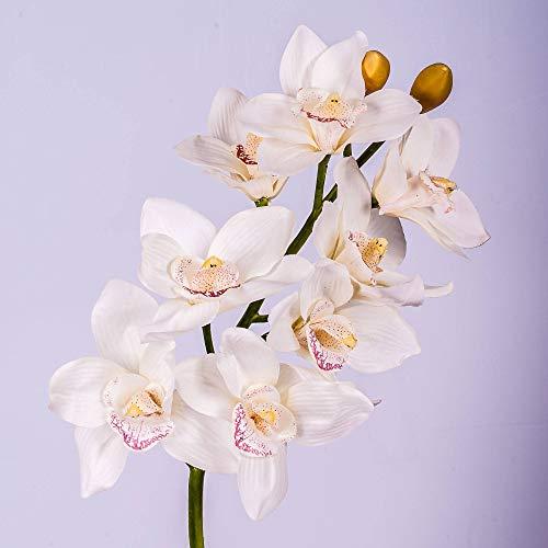 artplants.de Künstlicher Orchideen Cymbidium Zweig FEONA, 8 Blüten, Creme - weiß, 60cm - Deko Blütenzweig - Kunstorchideen Blumen