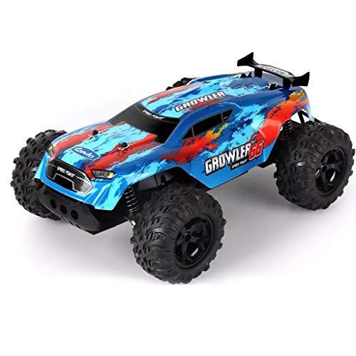 IIIL 1:14 Coche Teledirigido, 2WD RC Car, 2.4Ghz Electric Car Off-Road Monster Truck para Niños Y Adultos Mejor Regalo Cumpleaños,Azul