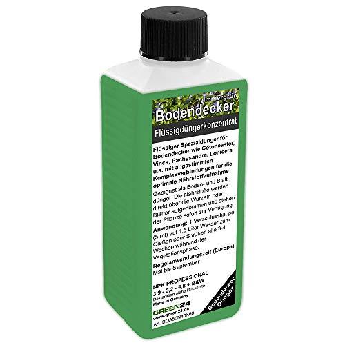 GREEN24 Bodendecker-Dünger immergrün Flüssigdünger HIGHTECH