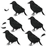 UCSAJI 6PCS Halloween Black Realistic Crow Halloween Props Black Feathered Crow Simulation Animal Model for Party Decoration