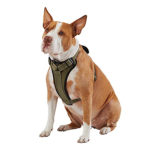 KONG Max Ultra Durable Neoprene Padded Chest Plate Dog Harness Offered by The Barker Company (Green, Small)