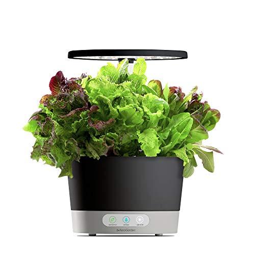 AeroGarden Gr Harvest 360 360-Black w/Heirloom Salad Greens Seed Pod Kit, Black