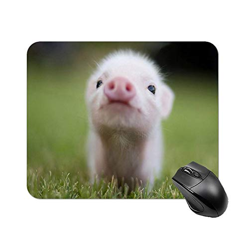 Gaming Mouse Pad Adorable Appearance Small Size Cute Baby Teacup Pigs Art Desktop and Laptop 1 Pack 25x20x2cm/9.8x7.9x0.8inch