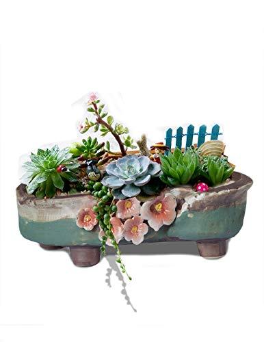 Dahlia 8' L x 5.3' W Vintage Floral Ceramic Succulent Planter/ Plant Pot/ Flower Pot, Turquoise