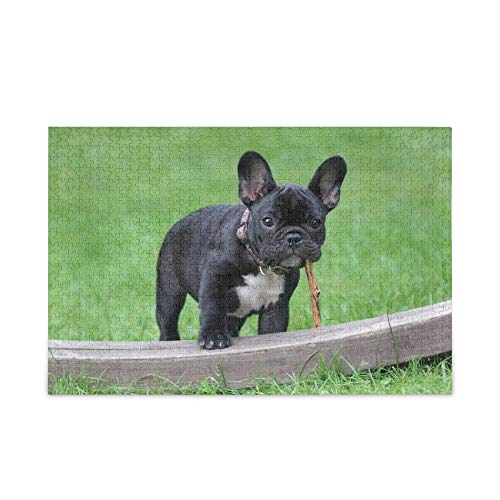 KLL French Bulldog Puzzle 1000 Pieces Jigsaw Puzzles for Kids Adults Jigsaw Puzzle