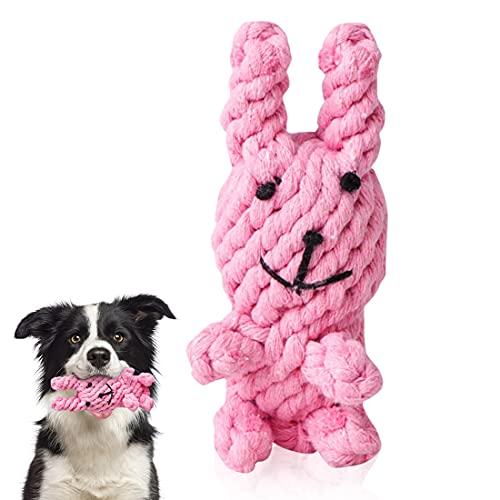 O-Kinee Hundespielzeug, Kauspielzeug Welpen, Hund Quietschende Kauen Spielzeug, Welpenkuscheltier, Interaktives Zahntraining Spielzeug für Kleine und Mittlere Welpenhunde