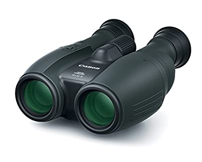 Canon Cameras US 14X32 is Image Stabilizing Binocular, Black (1374C002) from Canon