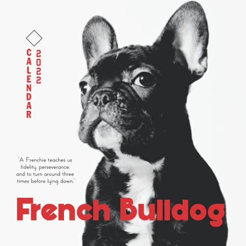 French Bulldog 2022 Calendar: From January 2022 to December 2022 - Square Mini Calendar 7x7' - Small Gorgeous Non-Glossy Paper