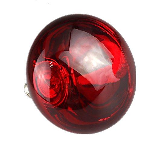 xingbailong Rote Oberflächen-Wärmelampe, wasserdicht, explosionsgeschützt, Glühbirne für Ferkel, Huhn, Ente, Vögel, 100 W