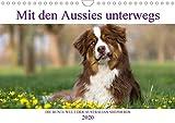 Mit Aussies unterwegs - Die bunte Welt der Australian Shepherds (Wandkalender 2020 DIN A4 quer): Ein Kalender der bunten Hunderasse Australian ... (Monatskalender, 14 Seiten ) (CALVENDO Tiere)