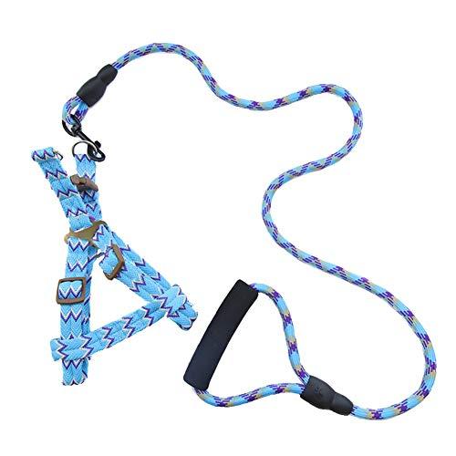 cloudbox Arneses para collares de perro, arneses para perros de mascotas, plomo pequeño y grande, suministros para perros (1,0 x 120 cm) para mascotas