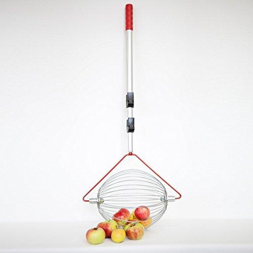 Feucht Obsttechnik Apfel-Sammler mit Teleskopstab- der Roll-Blitz die kleinste Obstaufsammelmaschine der Welt Direkt vom Hersteller für Apfel, Birnen