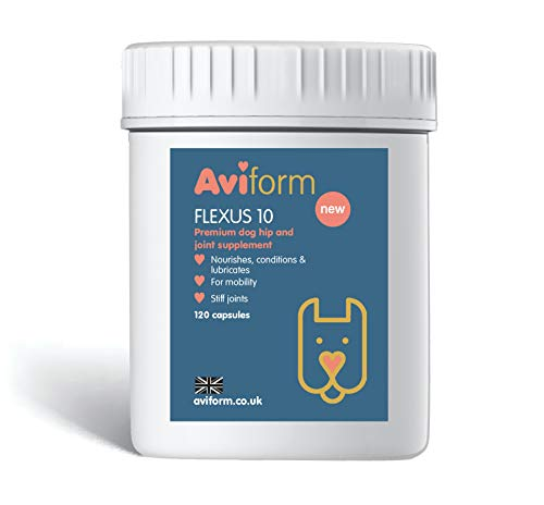 Aviform Flexus 10 Hip & Joint Supplement for dogs - Packed with 10 Key Ingredients - Glucosamine, MSM and Chondroitin to Improve Mobility and Joint Health - Capsules or Powder