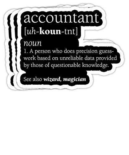 Accountant Definition Funny Accounting Gift Decorations - 4x3 Vinyl Stickers, Laptop Decal, Water Bottle Sticker (Set of 3)