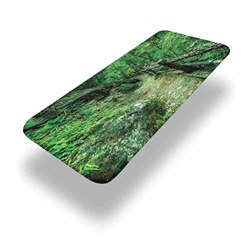 LCGGDB Polyester Picnic Table Fitted Tablecloth Cover,Ob Luang Thai National Park Elastic Edged Fitted Table Cloth,30in x 72in (6ft),for Picnic Table