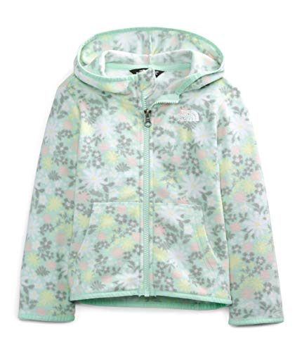 The North Face Toddler Glacier Full Zip Hoodie, Misty Jade Flower Garden Print, 2T