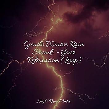 Gentle Winter Rain Sounds - Your Relaxation (Loop)
