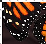 Monarch, Schmetterling, Rock, Kleid, Monarchfalter Stoffe -