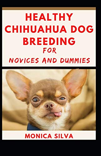 Healthy Chihuahua Dog Breeding for novices and dummies
