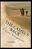 The Camel's Back Illustrated
