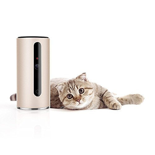 Petkit P310 MATE Pet Camera Monitor 340 ° draaibaar 110 ° Visual 2-weg audio 720P Video Activity Monitor