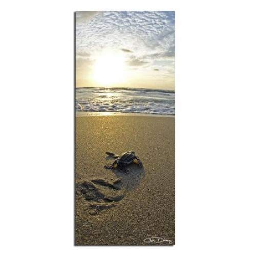 Ready2HangArt Baby Sea Turtle' Coastal Contemporary Photograph Canvas Wall Art Print, 40