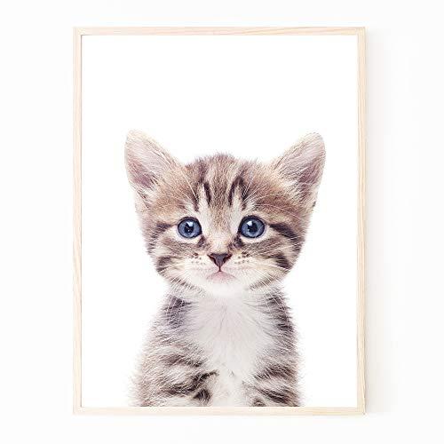 ポスター アートポスター A4 猫 子猫 キャット ペット 子供部屋 子供用 北欧 おしゃれ インテリア フレームなし (A4ポスター (210×297mm))