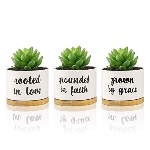 3.5 Inch White Succulent Planter Small Plant Pots 3-Pack - Grounded In Faith, Rooted In Love, Grown By Grace …