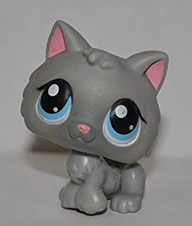 Kitten #66 (Grey, Blue eyes, single shade of blue in eyes) - Littlest Pet Shop (Retired) Collector Toy - LPS Collectible Replacement Single Figure - Loose (OOP Out of Package & Print)