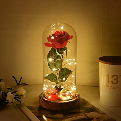 Dream of Flowers Beauty and The Beast Red Rose in Glass Dome...