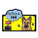 ドライブレコーダー 搭載車 録画中 犬 ステッカー シェパード ジャーマンシェパード シール 車 車用 雑貨 グッズ