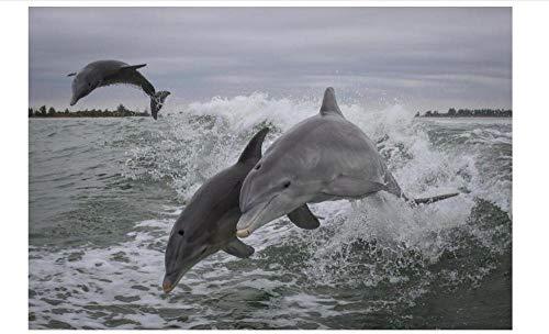 Animal Delfín Saltando En El Mar 5D Diy Flor Llena Diamante Pintura Por Números Taladro Completo Diamante Pintura Bordado Diamantes De Imitación Punto De Cruz Manualidades Para Adultos, Hogar, Pared,