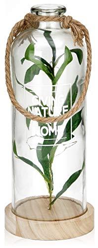BRUBAKER Lichterflasche 31 cm mit Olivenzweigen und 10 LED Lichtern zum Aufhängen