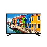 MEDION E13225 80 cm (31,5 Zoll) Full HD Fernseher (HD Triple Tuner, DVB-T2 HD, CI+, Mediaplayer, 3 x HDMI, SCART, VGA, USB)