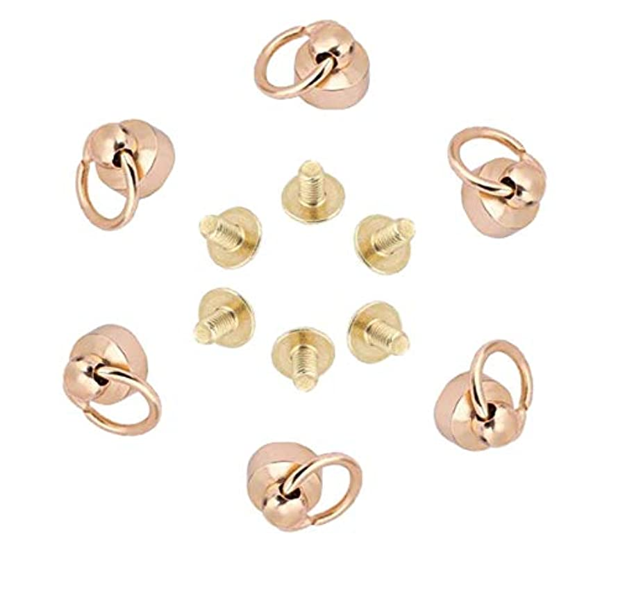 AKOAK Brass Pull Ring Pacifier Shape Rivets with Screw,Rivets Fasteners for DIY Leather Craft Belt Bag Wallet,9mm,6 Set (Gold)