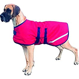 Danarmor Triple Layered Winter Great Dane Dog Coat – Giant XXL