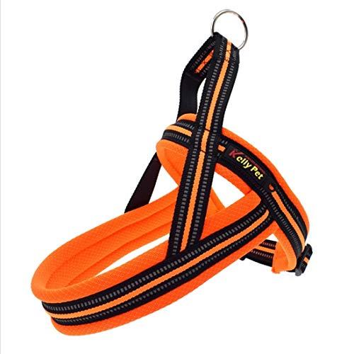 Pet ADRESH Collar DE Perros Arny A7 Poliéster Reflectante Arnés de Pecho Playa Leash Tracción Grandes Perros de Seguridad Cadena de Seguridad Cuello de Cuerda, Liqingshangmao (Color : Orange)