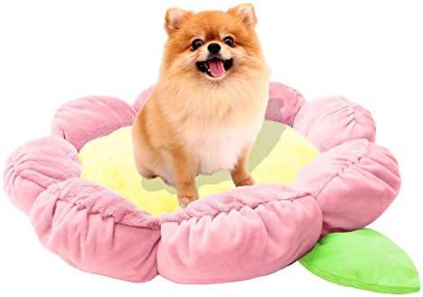 Hello kitty dog bed