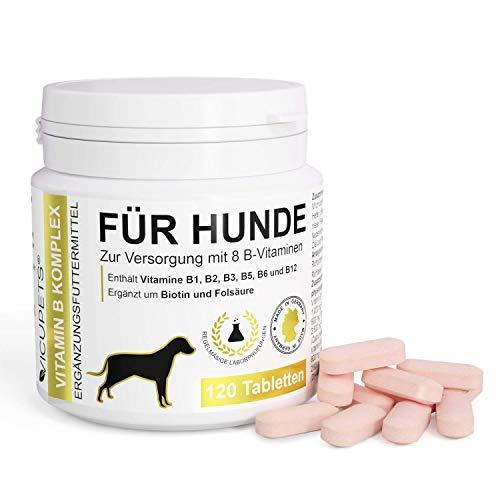 Vicupets® Vitamin B Komplex für Hunde | 8 B-Vitamine, B12, Biotin und Mineralstoffe | für alte (Senior) Hunde und Junge Welpen | Made in Germany | 120 Stück